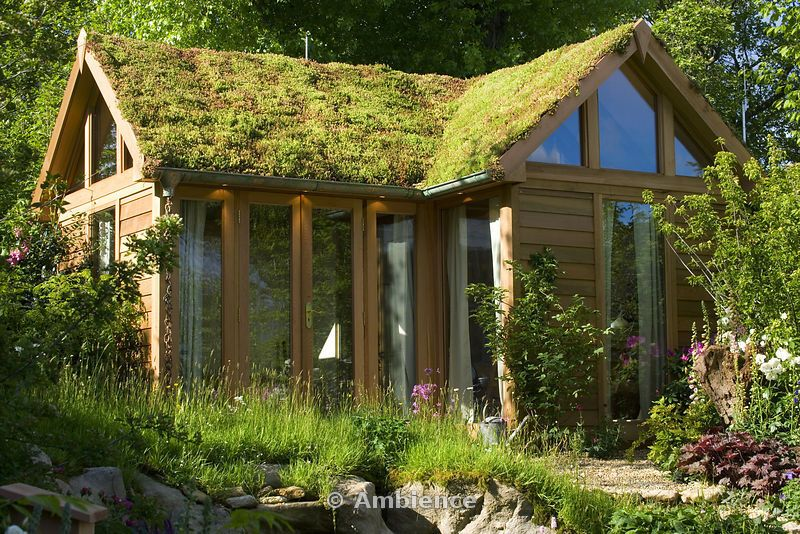 Private garden studio and home office with sedum roof Garden