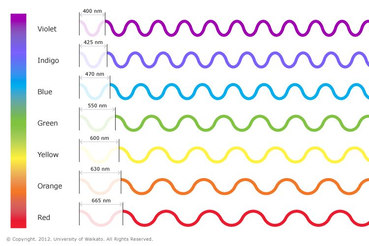 Sound Wave Frequency Units