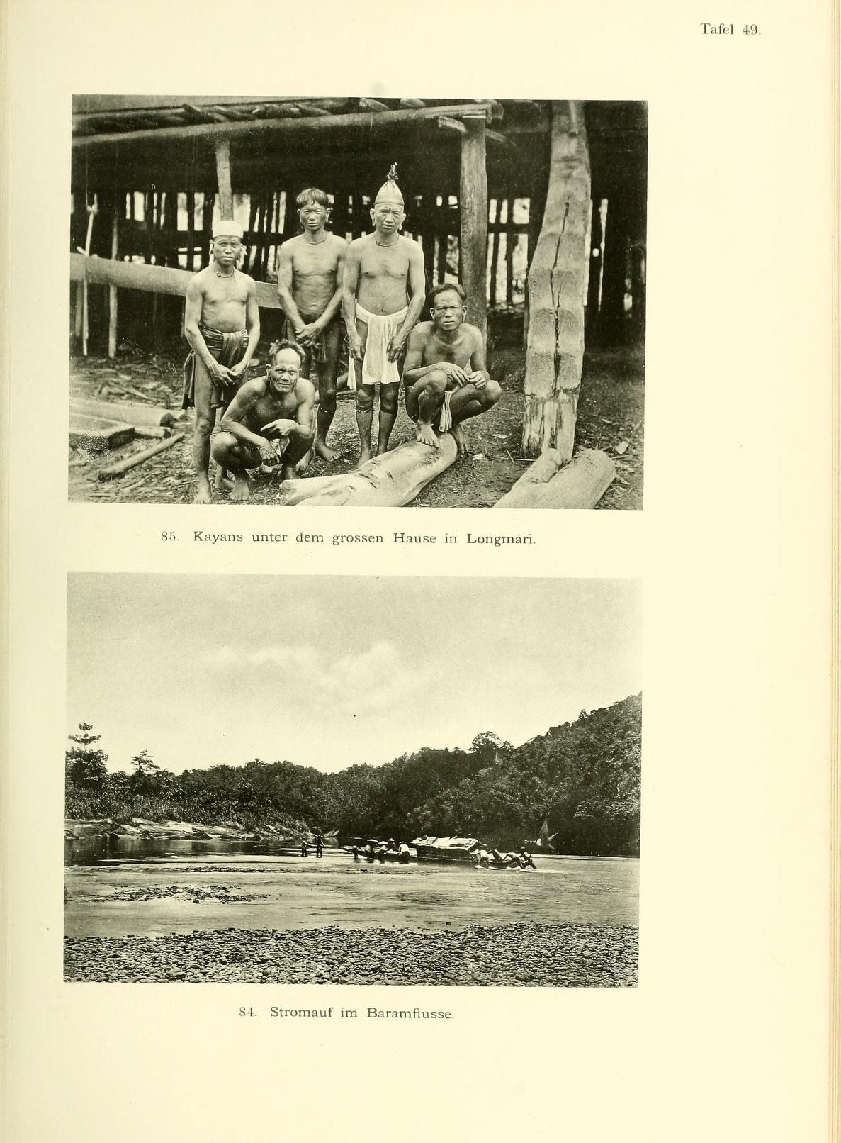 22.Bd. (1896) plates - Abhandlungen der Senckenbergischen Naturforschenden Gesellschaft. - Biodiversity Heritage Library