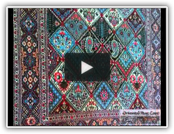 Oriental Rug Care Video Gallery