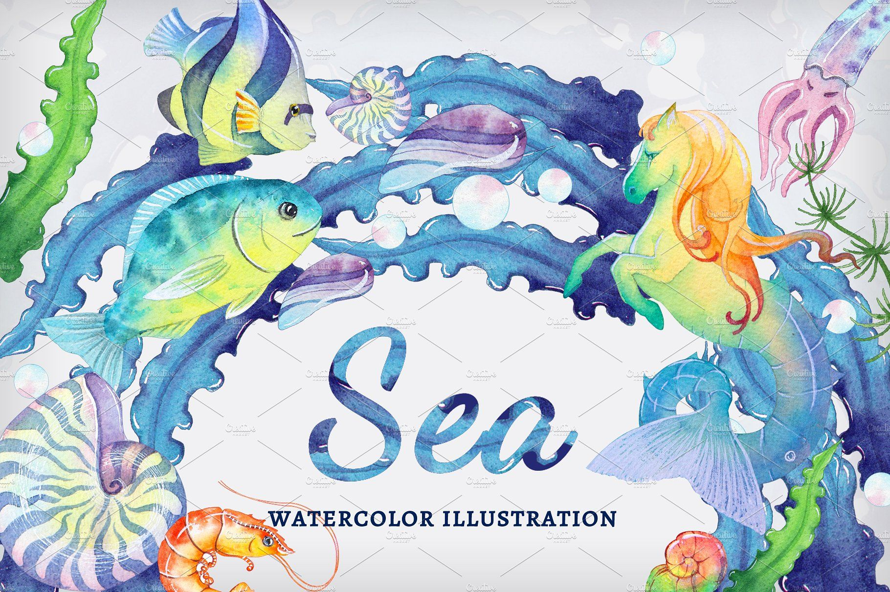 Sea Set Watercolor Illustrations Rgb Dpi Transparent
