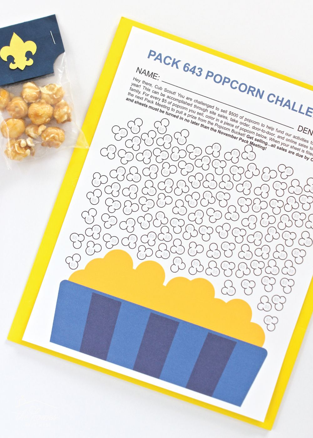 Cub Scout Popcorn Projects (To Help You Sell More Popcorn!) | The Homes I Have Made #cubscouts