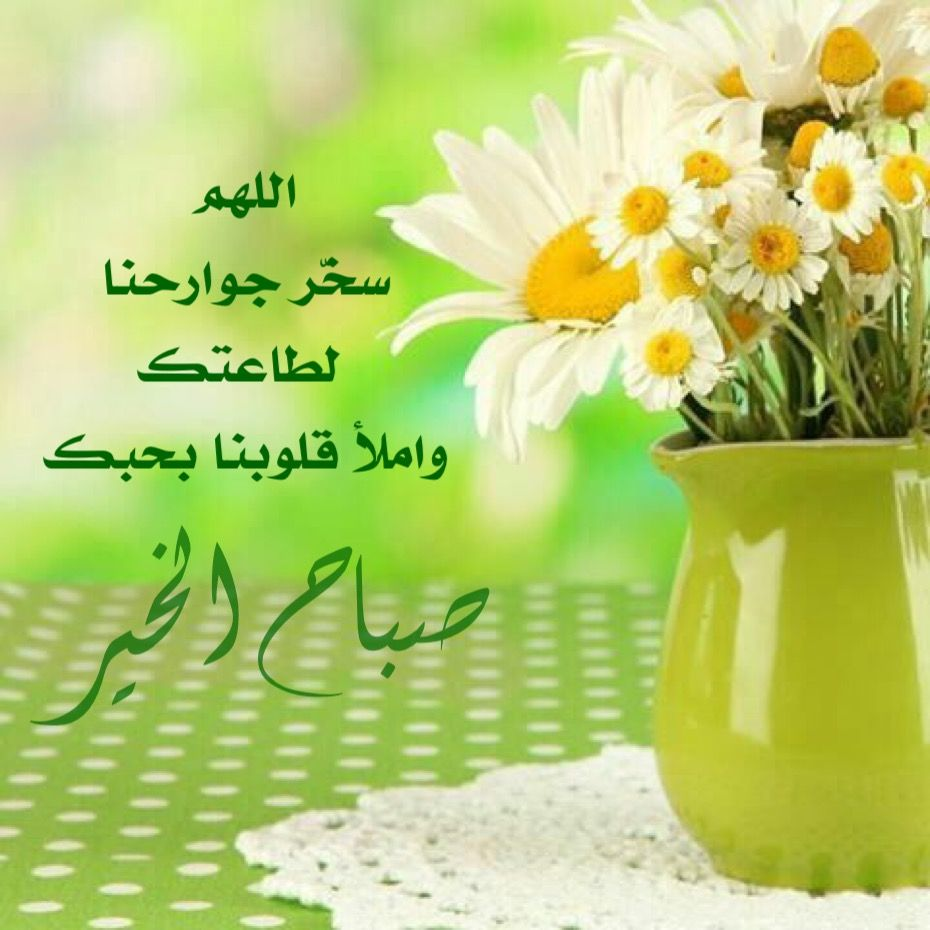 اللهم في هذا الصباح نسألك صدق التوكل عليك وح سن الإعتماد عليك وقوة اليقين بك اللهم سخ ر جوارحنا لطاعتك وام Good Morning Flowers Morning Greeting Herbs