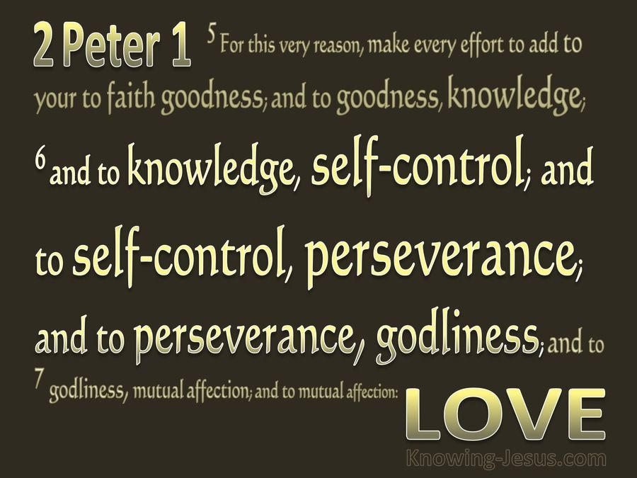 2 Peter 1-6 Add to Knowledge Temperance gold