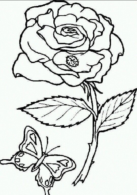 Rose printable | printable for fabric paint traceable | Pinterest