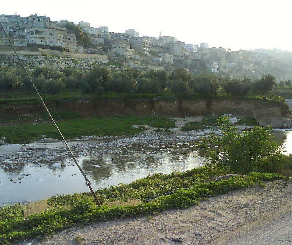 Zarqa River Near Mahanaim Jordan Early The Next Morning