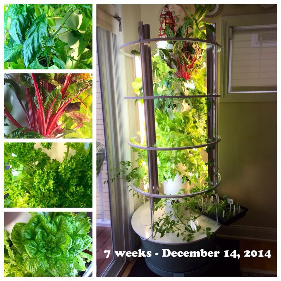 indoor Tower Garden Tower Garden Vertical Aeroponic Growing