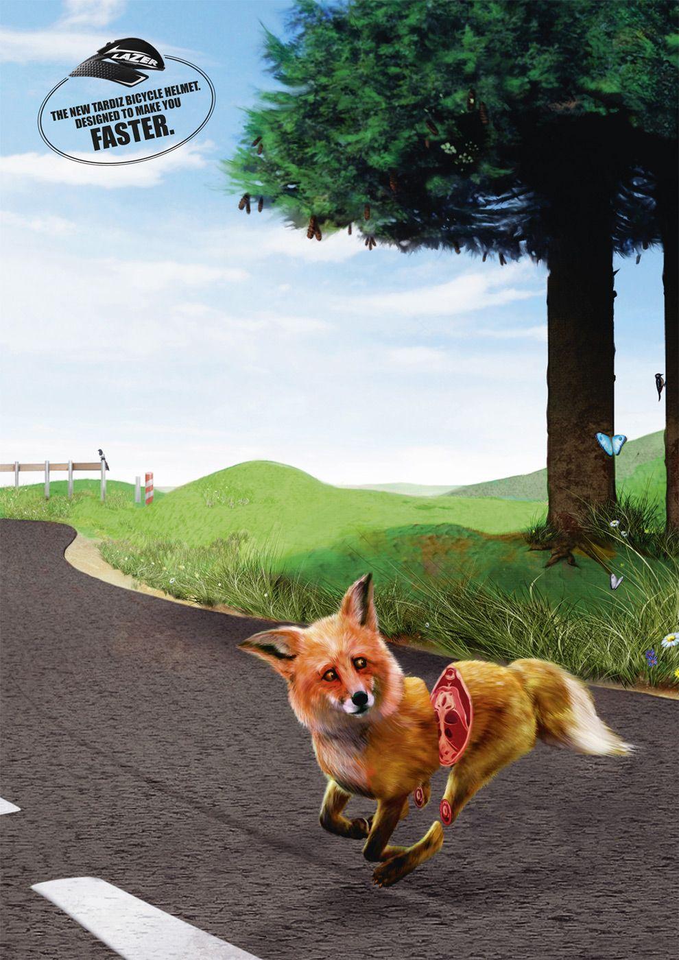 Lazer bicycle helmets: Fox