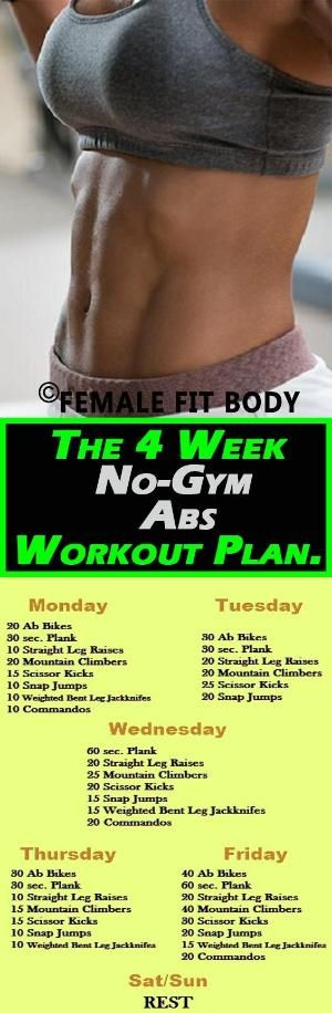 The 4 Week No Gym Abs Workout Plan No Crunches By Malinda Abs Workout Gym Abs Workout Ab Workout Plan