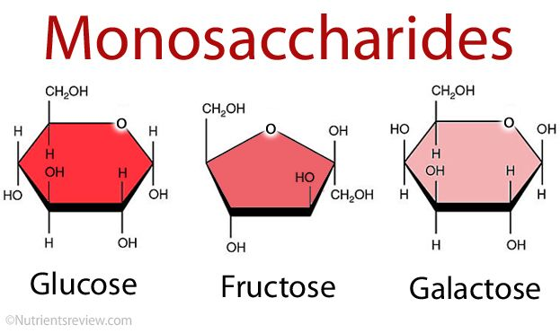 simplest form of sugar Monosaccharides (Simple Sugars) Definition, List, Examples of