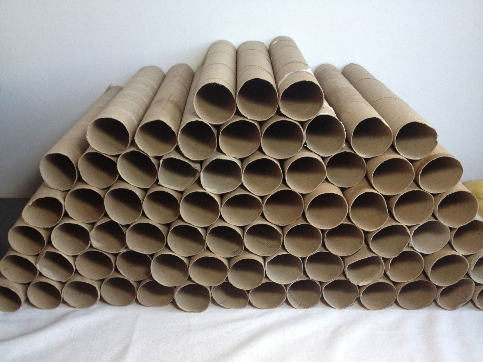 Make money on ebay selling empty paper towel rolls really for Crafts made out of paper towel rolls