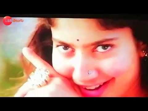 maari 2 tamil mp4 video songs download