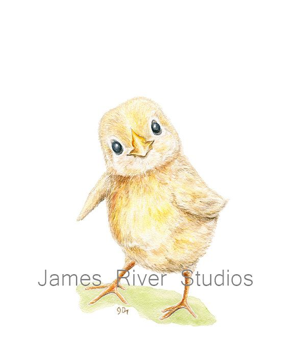 This CHICKS for You! by Nicole Fischer on Etsy Nursery