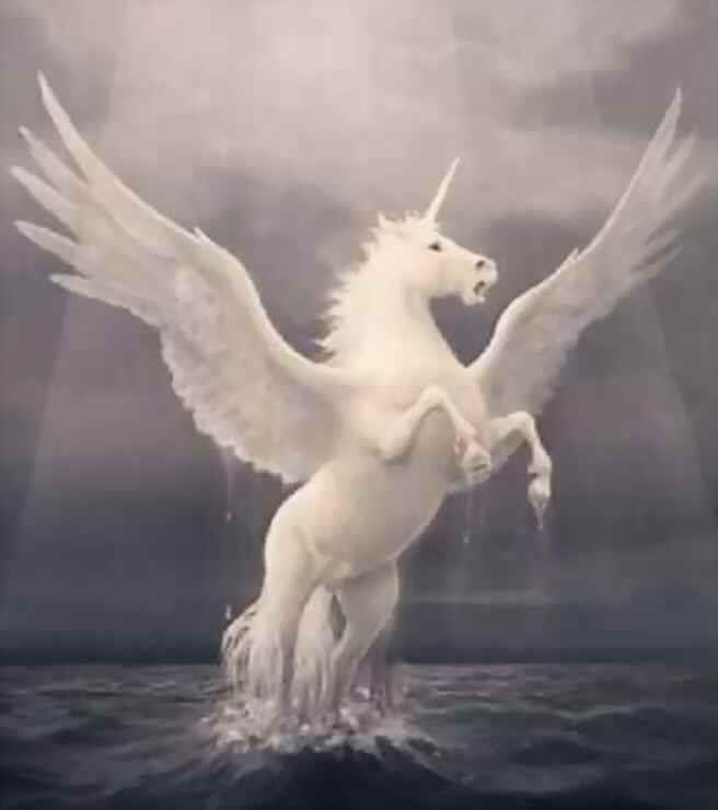 Also Known As A Pegacorn A Winged Unicorn Is A Fictional Equine