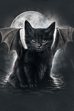 Bat Cat Black Cat Art Black Cat Tattoos Cats