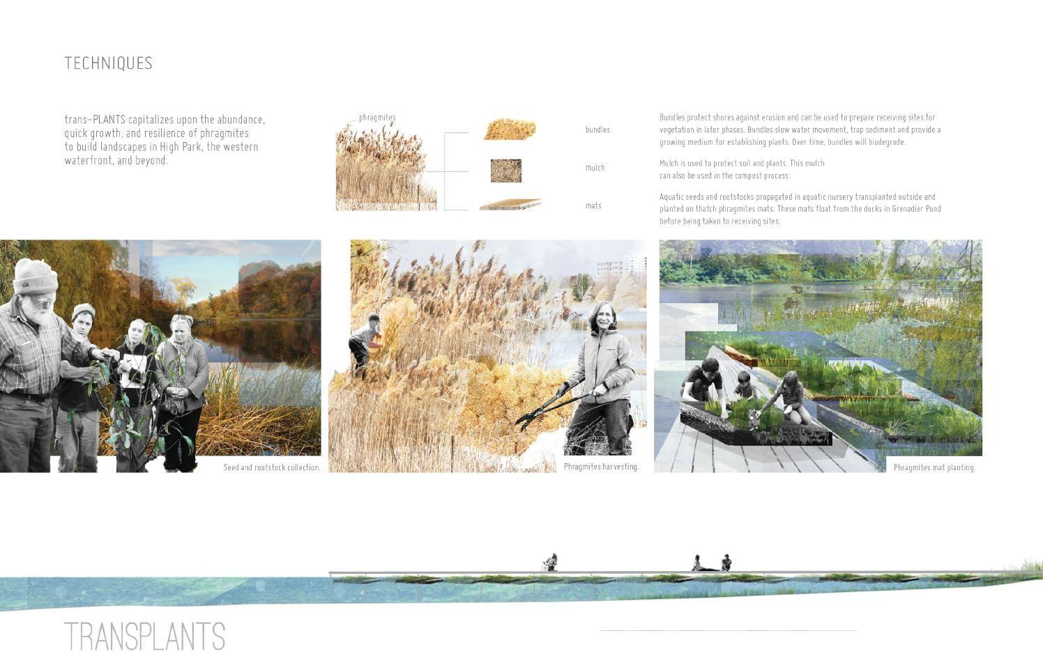 Emilia Hurd Portfolio '14 Landscape architecture