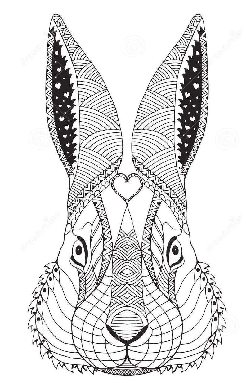 Zentangle Face Of Rabbit Art Coloring Sheet Rabbit Art Art