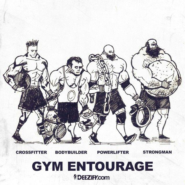 Hawks gym vs entourage