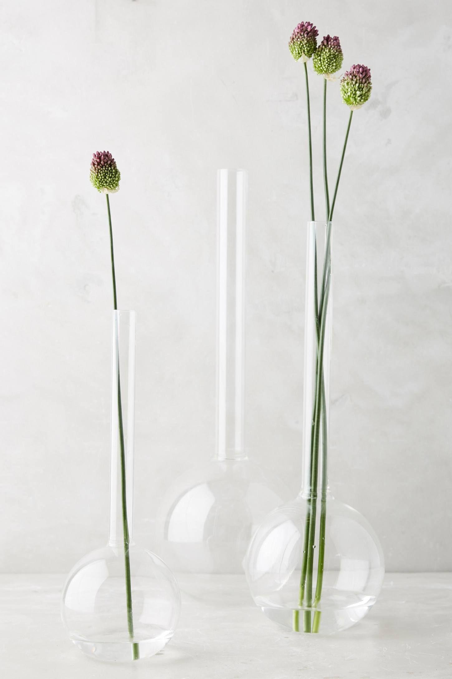 Laboratory Vase Vase Decorating My First Apartment Cafe Interior Design