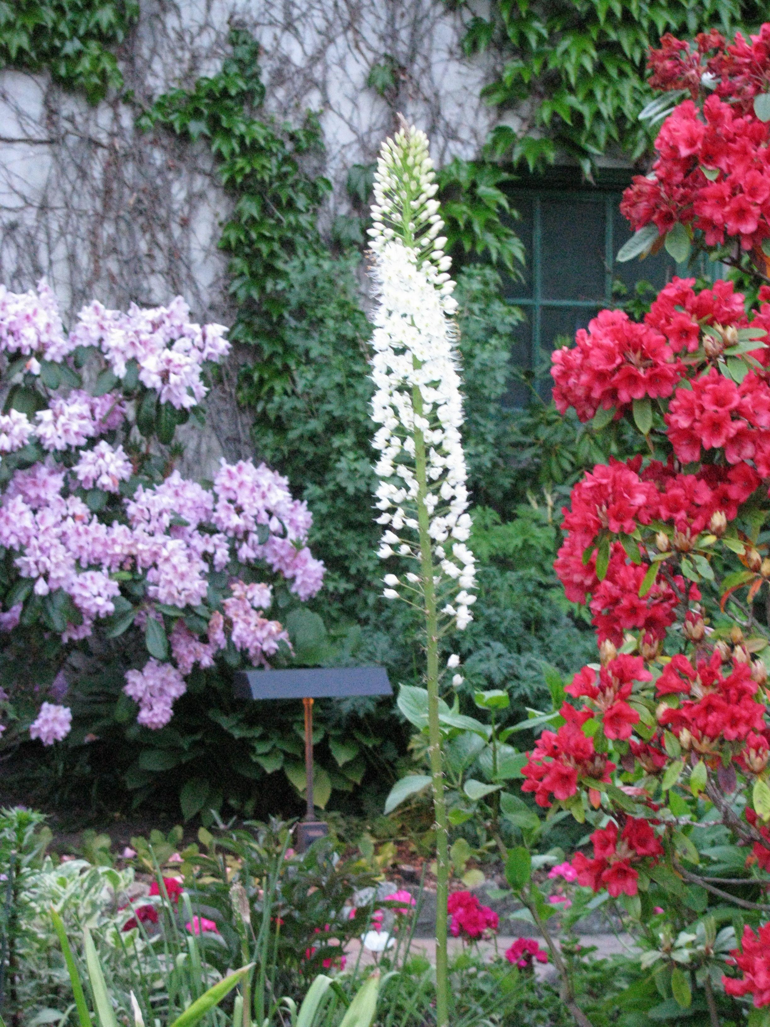 Butchart Gardens Butchart gardens, Olive garden delivery