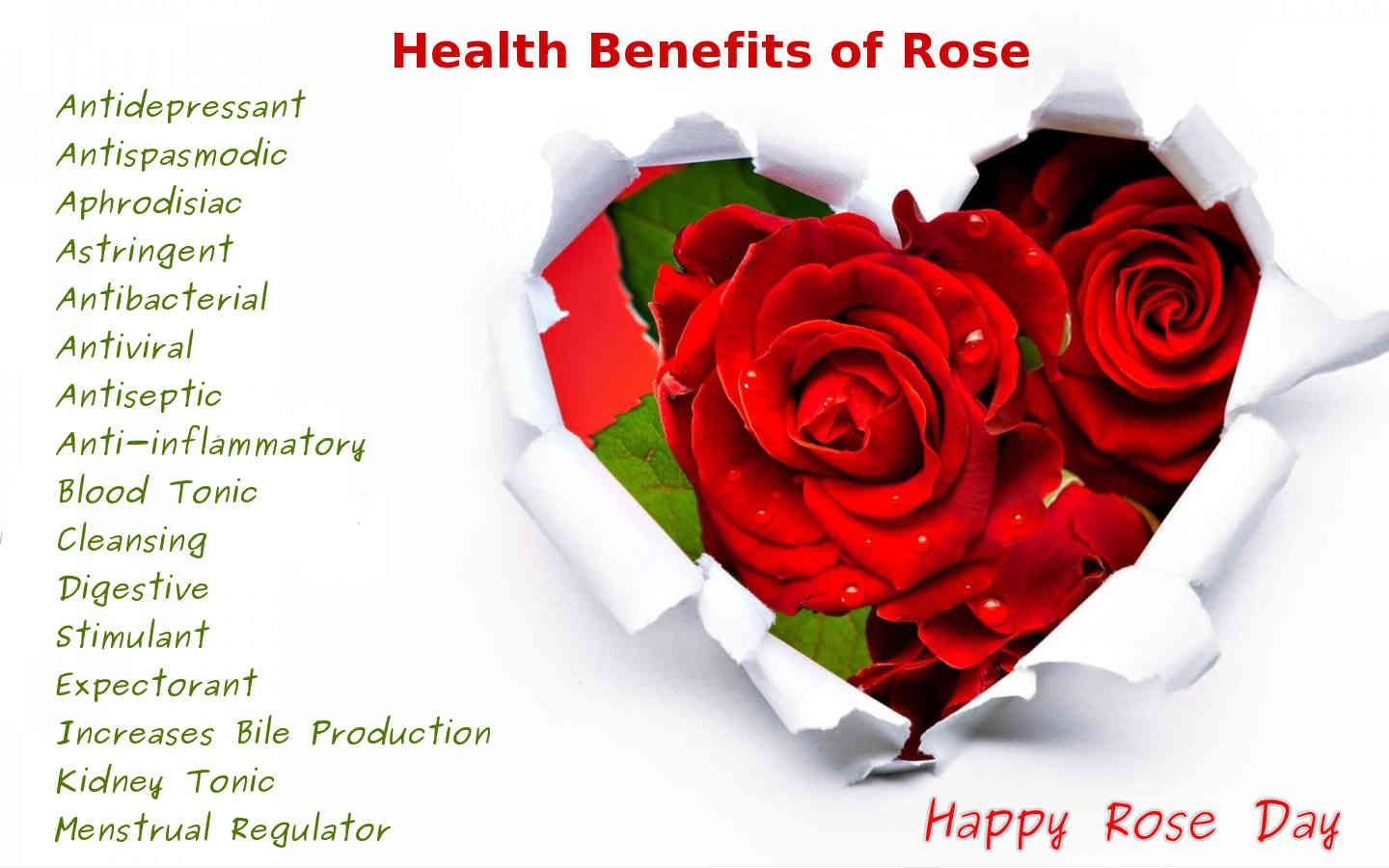 A Rose Is A Remedy Rose Has Amazing Healing Properties For Health Skin There Are Also Many Sur Love Rose Images Rose Day Wallpaper Love Rose Flower