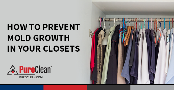 Cleaning Mold · Moisture Can Accumulate In Closets, Providing A Breeding  Ground For Mold Growth. Here Are