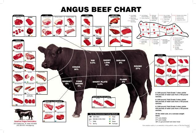 The Anatomy of Steak Cuts Explained in Two Minutes | Pinterest