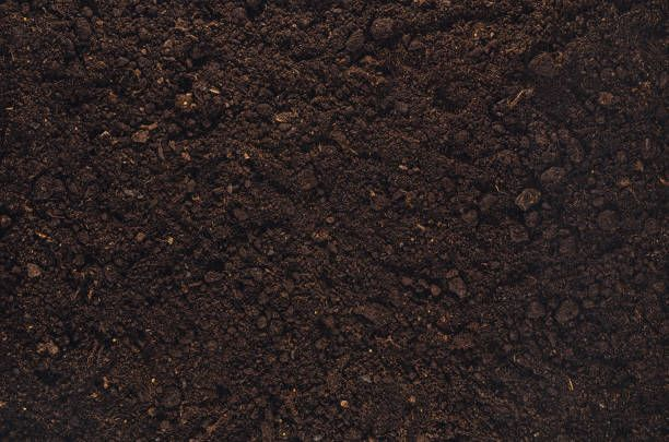 Fertile garden soil texture background top view for Soil texture
