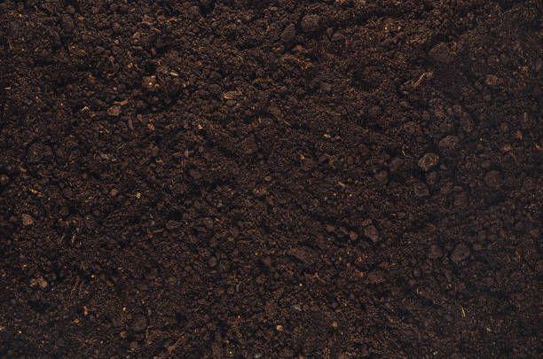 Fertile garden soil texture background top view scream for Topsoil garden soil