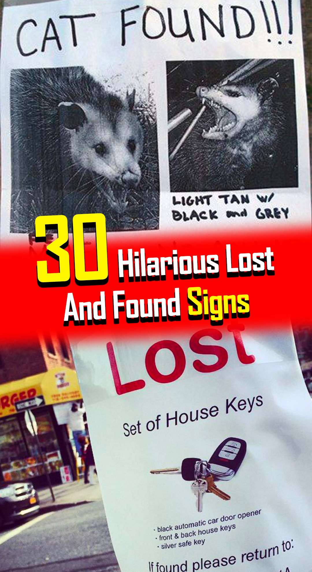30 Hilarious Lost And Found Signs In 2020 Funny Spongebob Memes Haha Funny Funny Signs