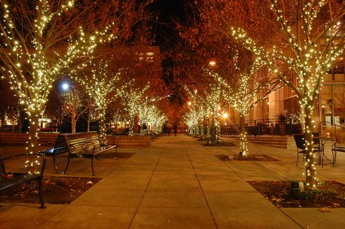 Image result for Commercial Christmas Lights