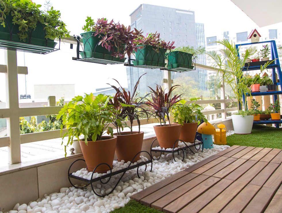 Imágenes de Decoración y Diseño de Interiores Balconies, Terrace - Terrace Design