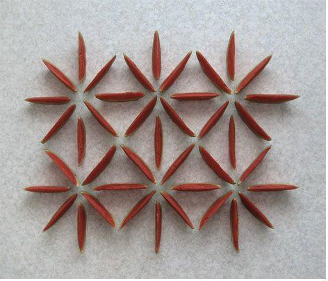 Using Food, Artist Creates Geometric Art