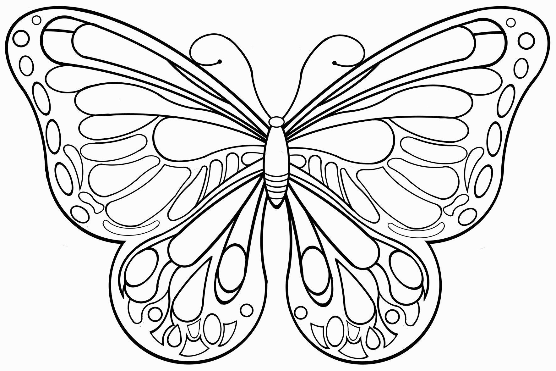 Kinder Ausmalbilder Schmetterlinge  Ausmalbilder schmetterling