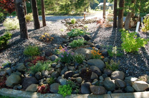 Wooded Lot Landscaping Ideas On 5 Acres Of Lush Wooded Land So When We Built Our House We Had Lots Wooded Landscaping Landscape Photo Library