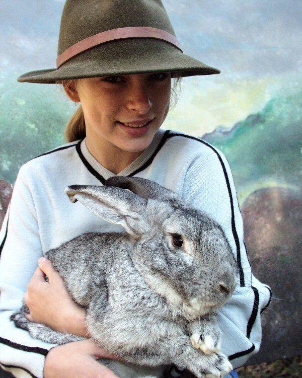 Giant Chinchilla Rabbit | Rabbits | Pinterest | Rabbit and Chinchillas