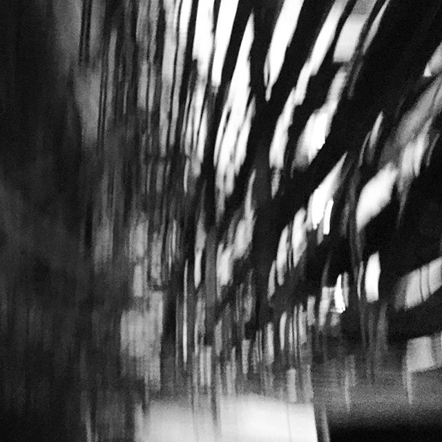 Walk. Don't run! #blackandwhite #bnw #monochrome  #instablackandwhite #monoart #insta_bw #bnw_society #bw_lover #bw_photooftheday #photooftheday #bw #instagood #bw_society #bw_crew #bwwednesday #insta_pick_bw #bwstyles_gf #irox_bw #igersbnw #bwstyleoftheday #monotone #monochromatic#noir #fineart_photobw