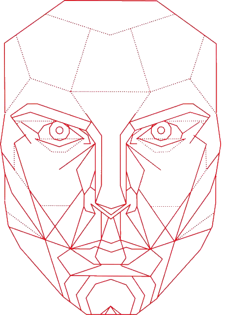 Golden Spiral Overlay Google Search Geometric Face Line Art Drawings Geometric Art