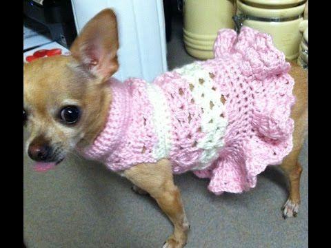 Exclusiva Ropa para perro en crochet - YouTube | Mascotas ...