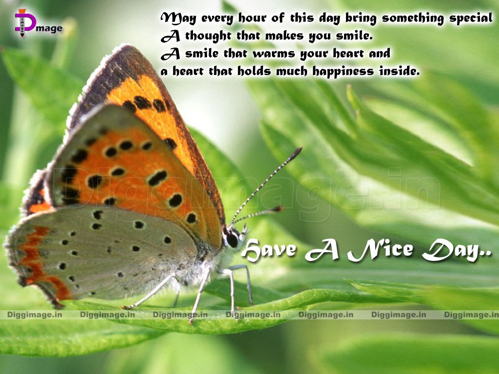 Cute Good Morning Quotes For Him   Http://www.meagraphics.com