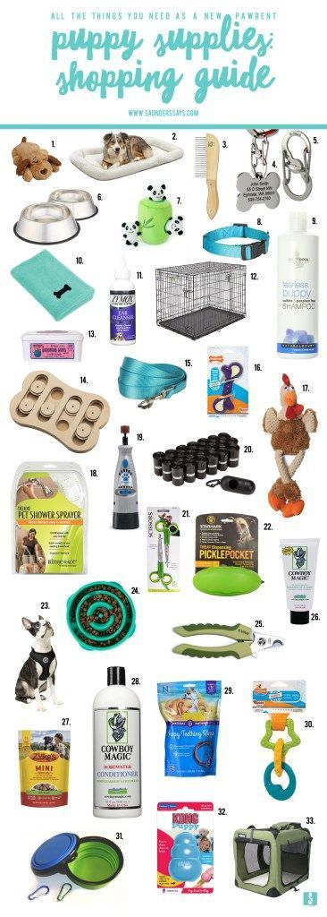 Puppy Supplies: A Shopping Guide for the New Pawrent - saunders says