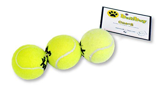 BallBoy One 2 RePurposed Tennis Ball Toy for Dogs * Details can be found by clicking on the image.