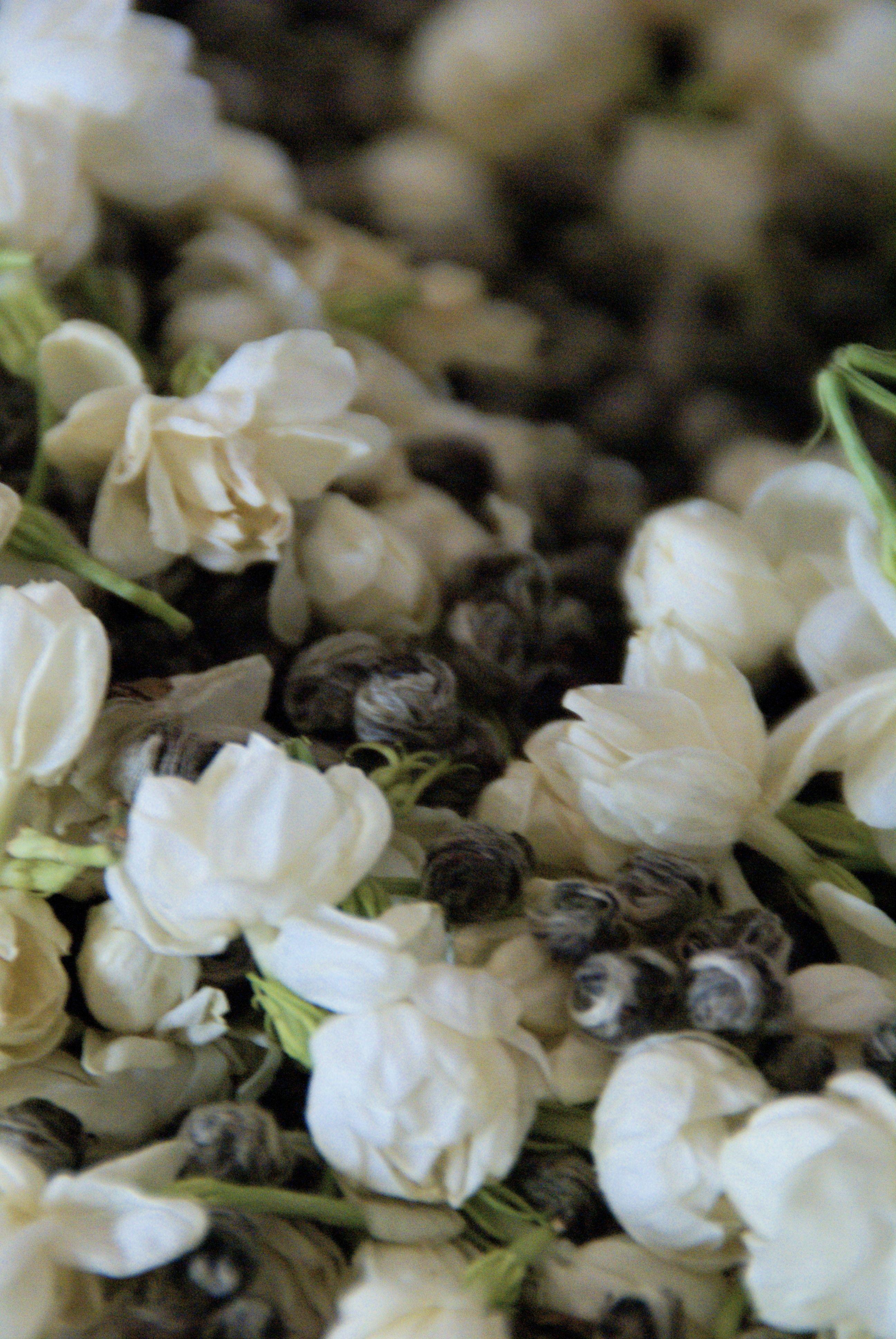 Jasmine Tea Flowers Flowers Pinterest Jasmine Tea Pearl Tea