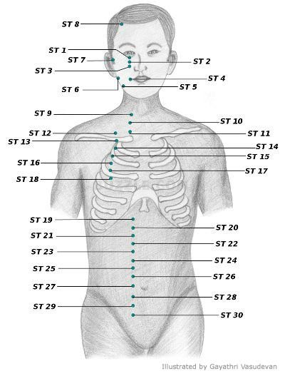 Acupressure points chart acupressure points acupressure and stomach meridian st aka foot yang ming acupressure points ccuart Image collections