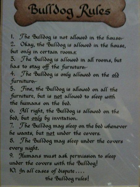 Quotes Over Honden Engels : Bulldog rules engelse buldog buldog