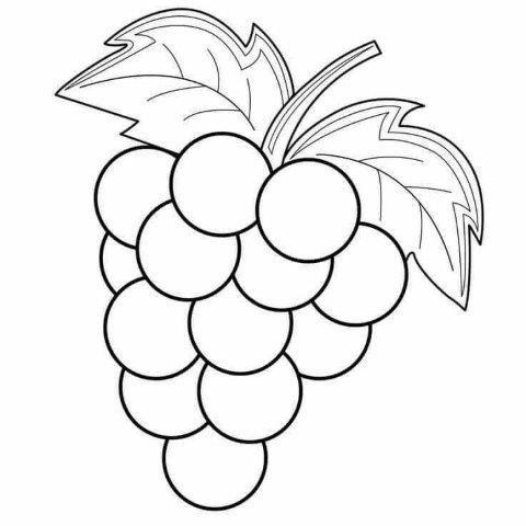 22 Dibujos De Frutas Para Colorear E Imprimir Educaciín Preescolar