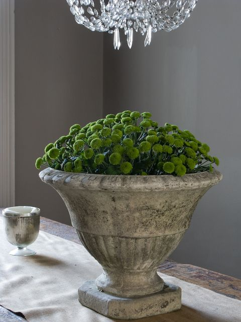 The green really pops in this neutral room. | Garden urns ...