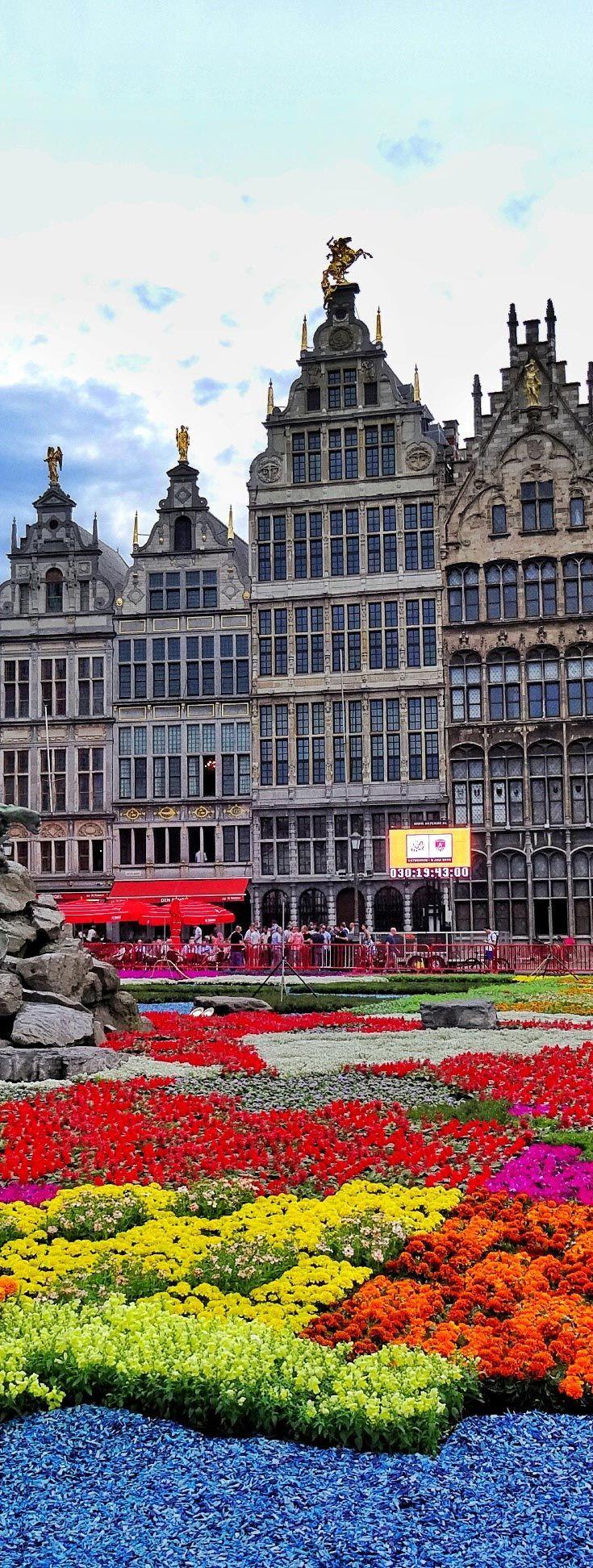 Flower Carpet- Grand Place at Antwerp | Belgium
