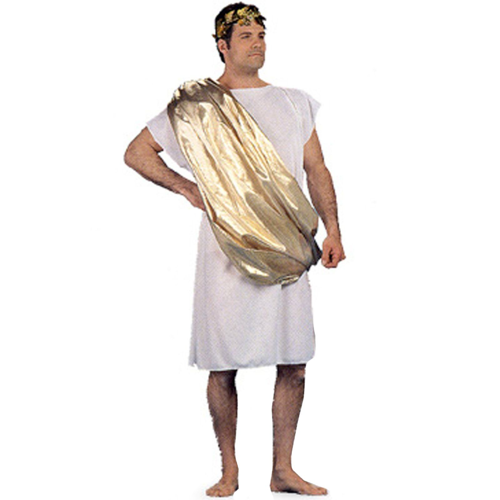 you have been invited to a Toga Party this Halloween season and ...