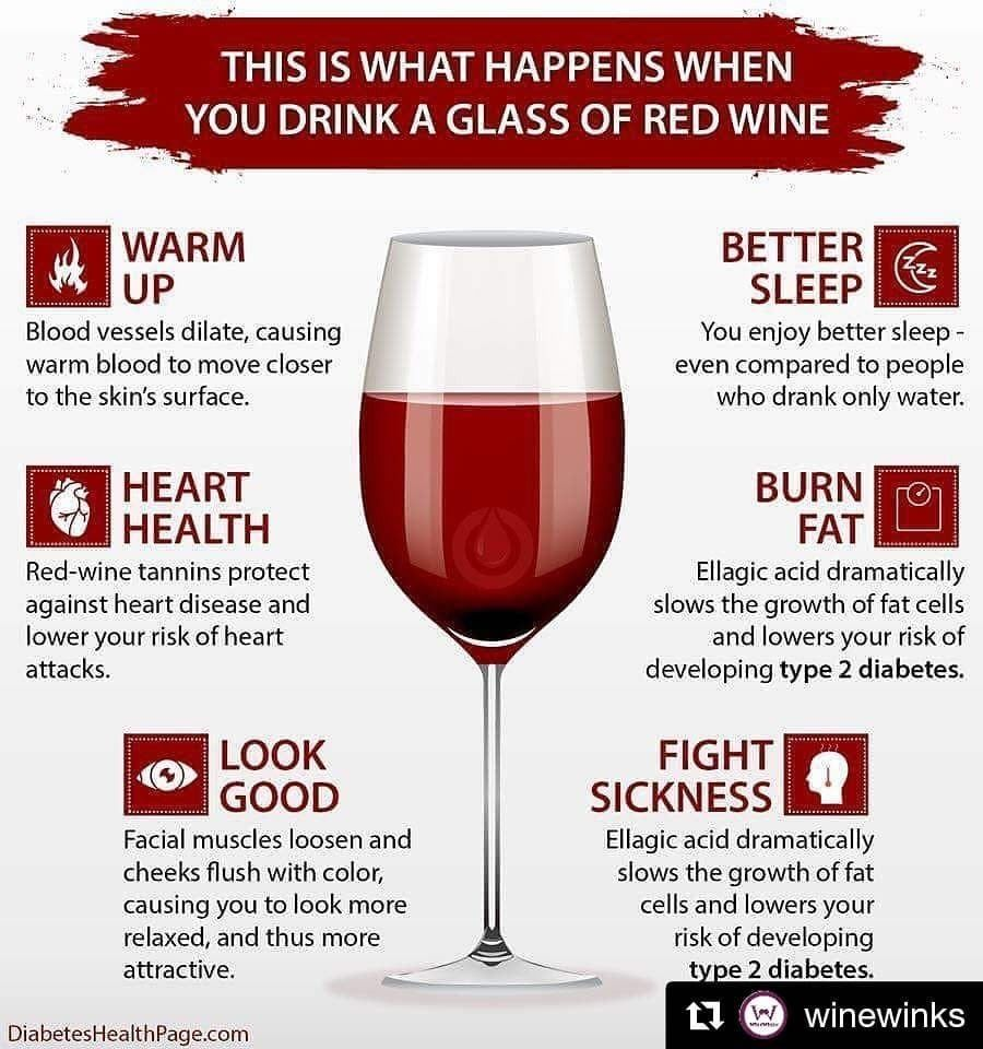Drink Wine What Happens When You Drink A Glass Of Wine Every Night Kcure In 2020 Red Wine Benefits Red Wine Health Benefits Red Wine